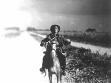Joe na koni