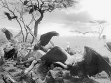 Hiroshi Sugimoto, Hyena