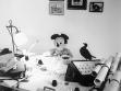"""Mark Dion, Mickey Cuvier """"objevuje"""" vyhynutí (1990)"""