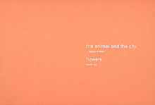 J. August Buehler, Martin Zet: the animal and the city and flowers